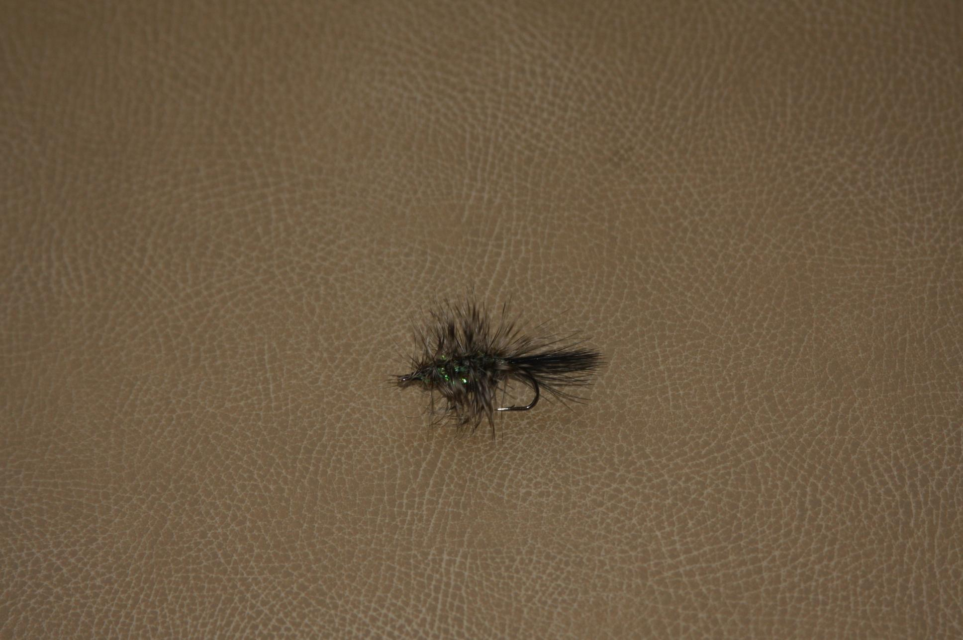 Andrew\'s First Fly