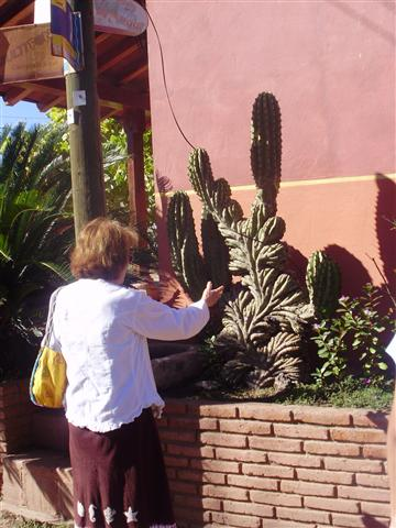 Grandma fascinated by the cactus