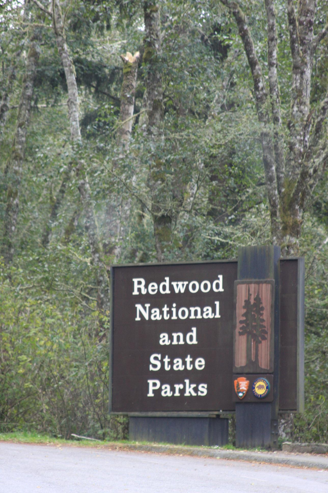 Home of the Redwoods