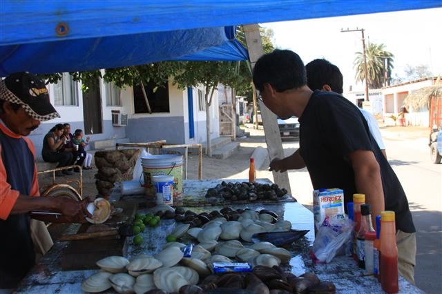 Sampling of the really big clams for lunch