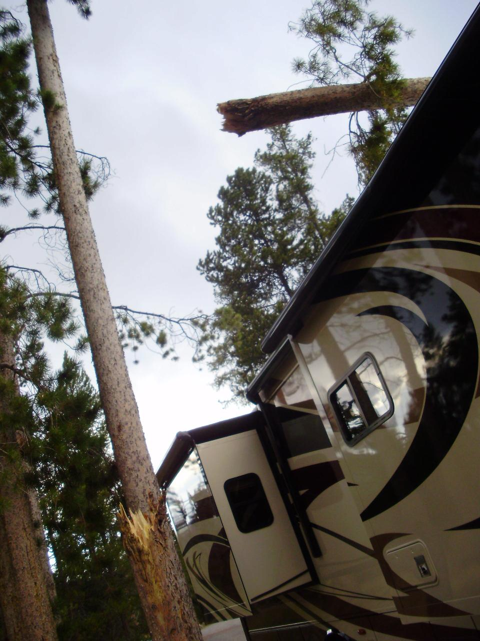 60\' Pine Tree Snaps and Lands on RV