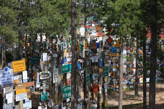 sign-post-forest-110_